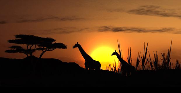 'Er is hoop voor crowdfunding in Afrika'